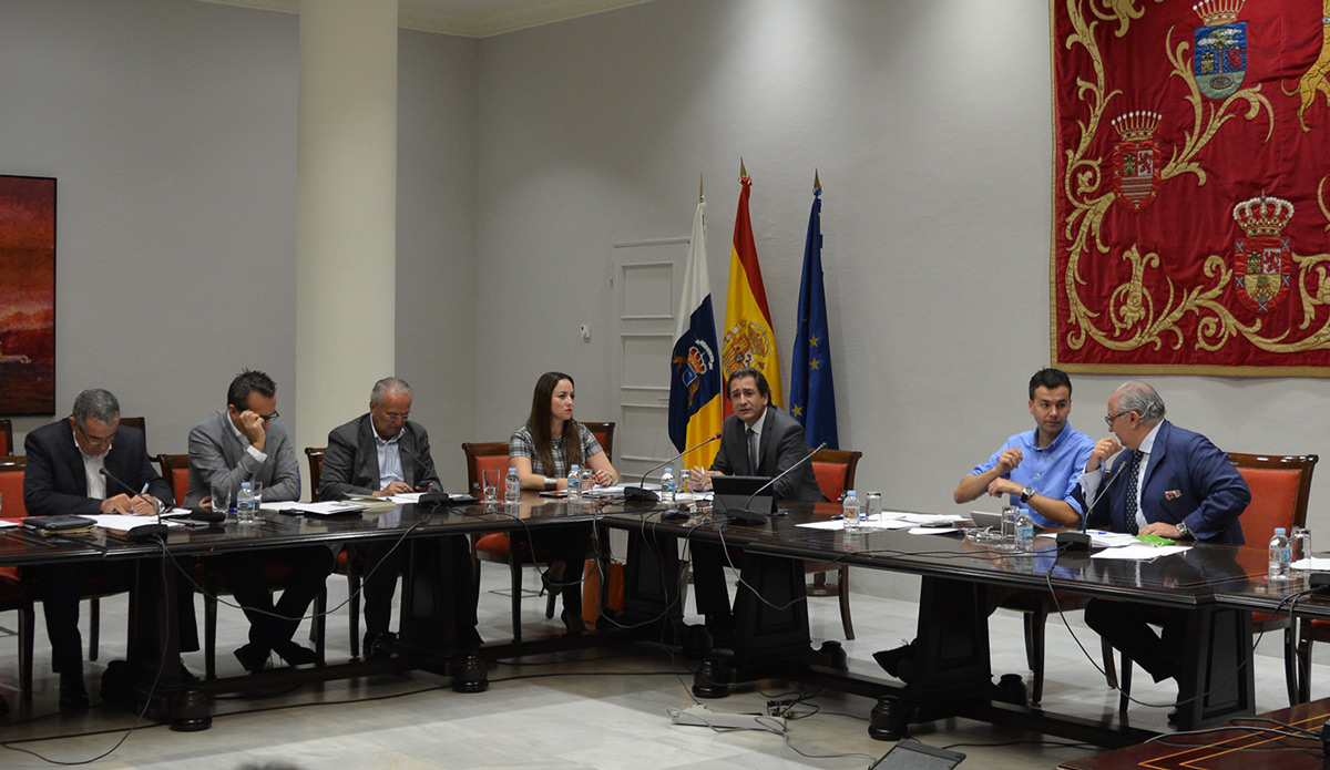 Photograph of the meeting this morning in the Canary Islands' Parliament.