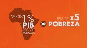 Agricultura en África / África Crece