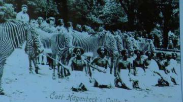Presentación del libro «El reparto de África», de Roberto Ceamanos
